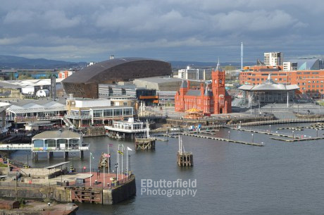 Cardiff Bay, viewed from the St David